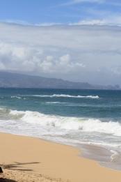 Maui 2013 584